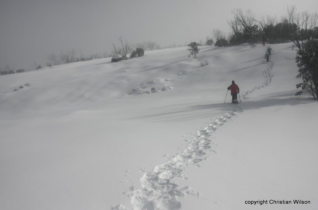 Mt Gungartan