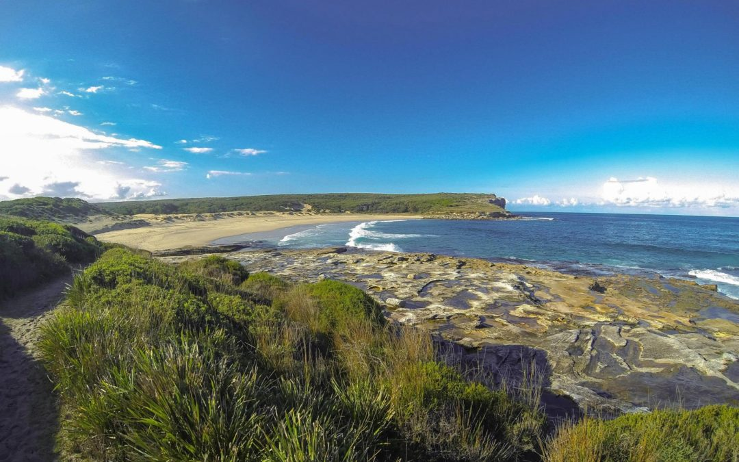 RNP Coast Walk – Otford to Bundeena