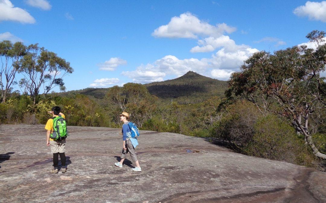 Mt Wondabyne