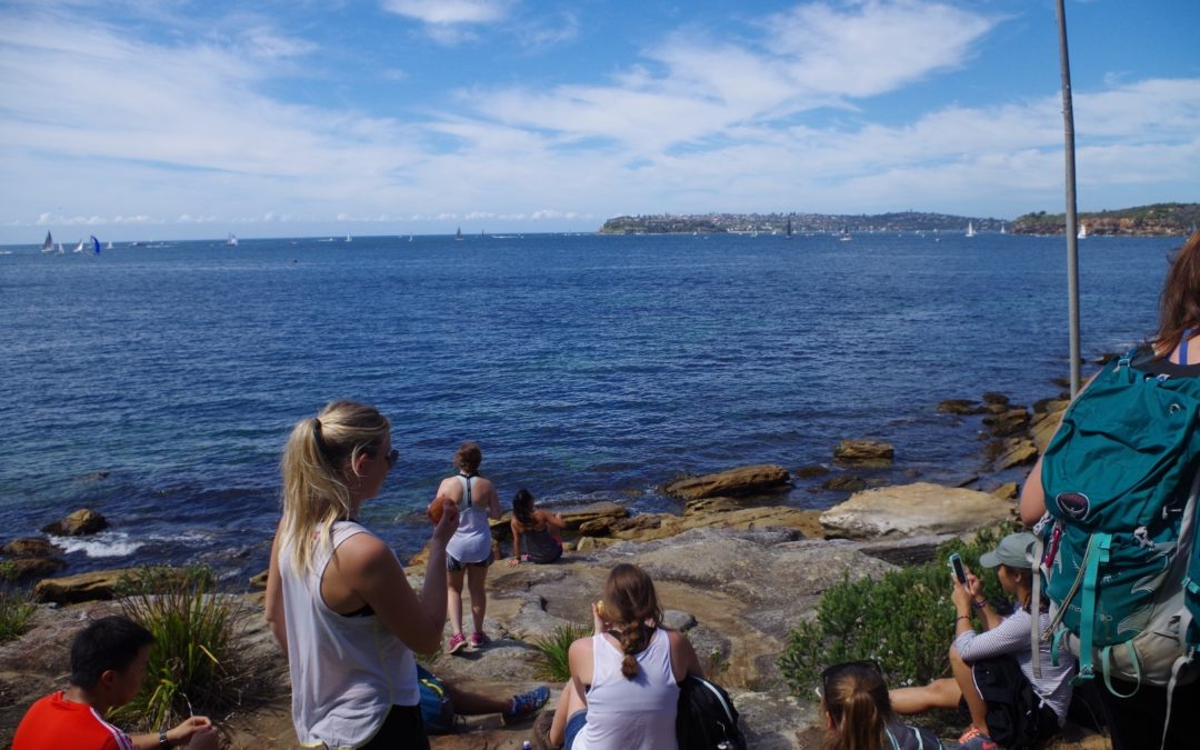 Manly – Balmoral -Taronga
