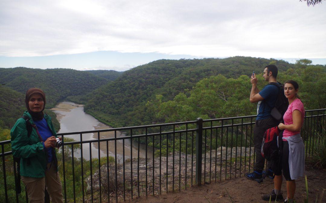 Berowra – Mt Kuringai
