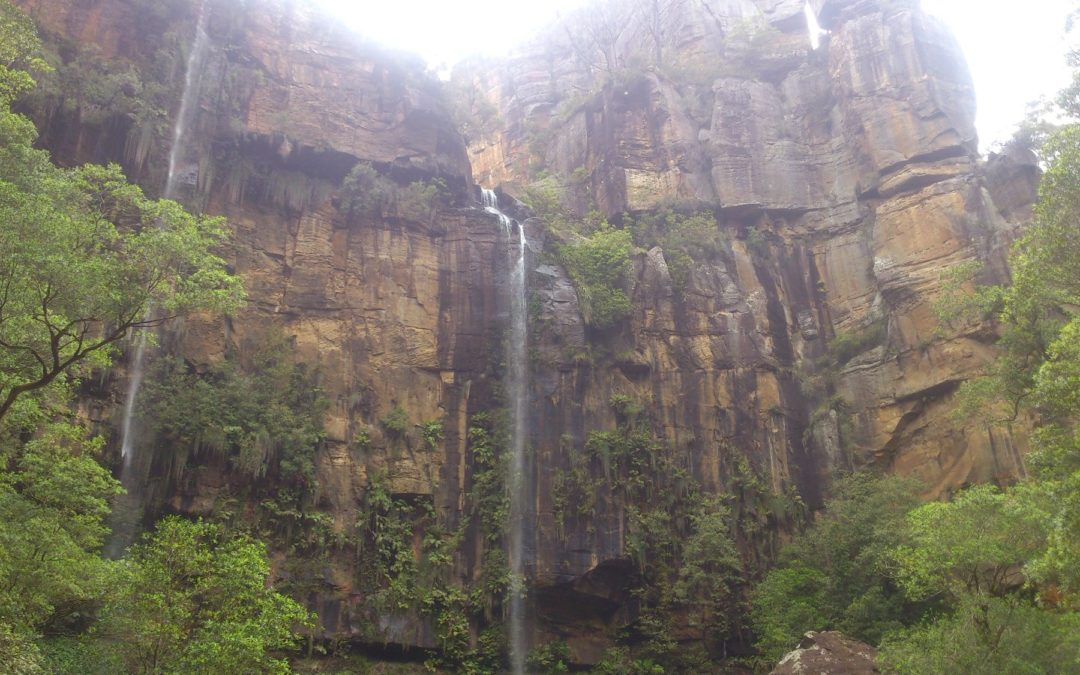 Gorge Exploration – Illawarra and Kangaroo Valley