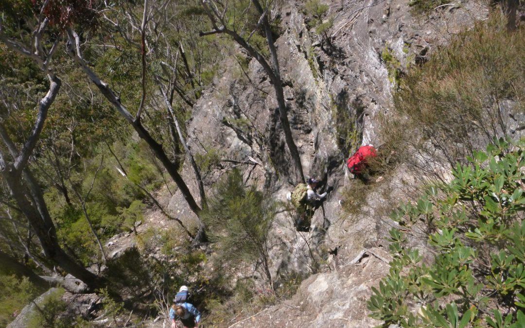 Hobnail Canyon