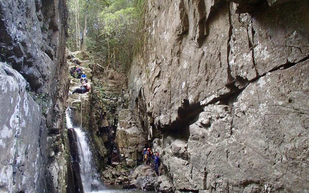 Beginner Canyoning Macquarie Rivulet